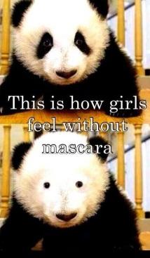 mascara-meme